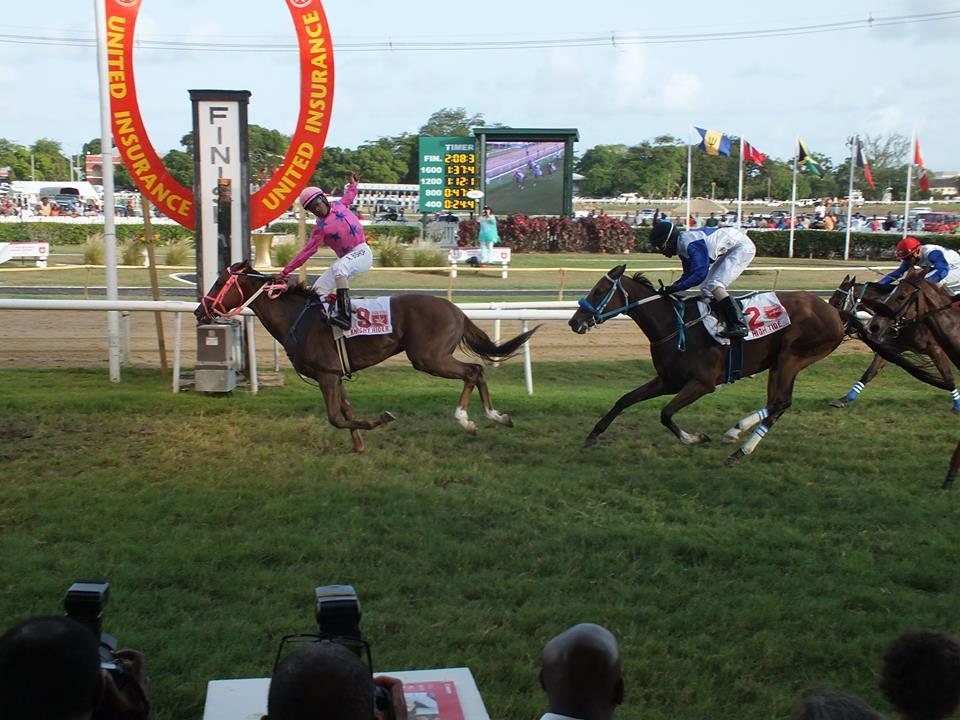 horseracing sporting barbados fb