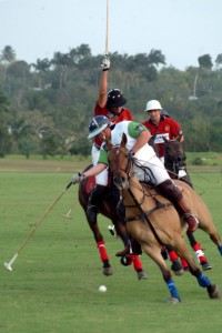 polo 41 - small - From Visit Barbados
